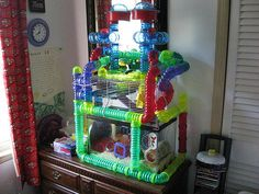 homemade hamster cages | MDPHamster-Habitats.jpg
