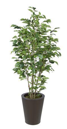 Artificial Green Ficus in Round Zinc