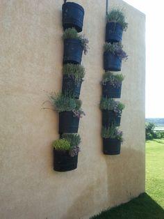 idea de jardineria