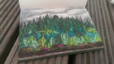 Abbeyliex bog landscape with sharpies❤