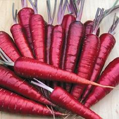 Dragon Carrot (Daucus carota) The most refined purple carrot available; bred by  John Navazio. Beautiful red-purple  exterior provides an amazing contrast with the yellow-orange interior when sliced. Sweet, almost spicy flavor. 90 days.