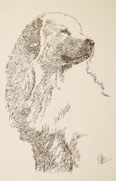 Great Pyrenees dog art portrait drawing from words. Your dog's name added into art FREE. Great gift. Signed Kline 11X17 Lithograph 47/500.