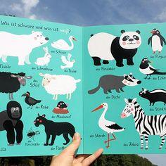 my new book for sauerländer #illustration #boardbook #childrensbook #sauerländerverlag