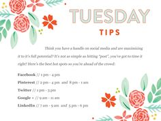 Social Media Strategies--->When to post, tweet, google + and pin from @Bloom Forum and Workshops