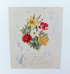 Pictures of Flowers - Botanical Illustrations - Floral Picture - Flower Picture - for framing on Etsy, £4.50