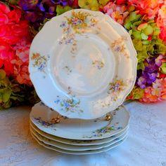 5 Beautiful Antique Limoges Porcelain Dinner Plates ~ Floral #HavilandLimoges