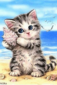 Cute Cat and Seashell Diamond Painting Kits - PigPigBoss Full Drill Diamond Painting by Numbers Cross Stitch Art Diamond Dot Kits for Adults x inches) Cute Kittens, Cats And Kittens, Animals And Pets, Cute Animals, Cross Paintings, Diamond Art, Cat Drawing, Drawing Room, Cat Art