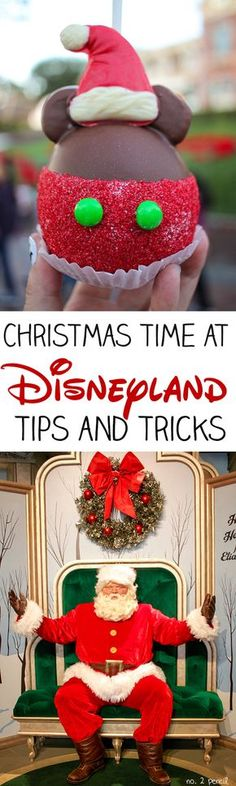Disneyland at Christmas Tips and Tricks