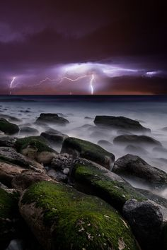 Nature's splendor by Jorge Maia.