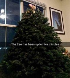 Funny Pictures Of The Day – 40 Pics