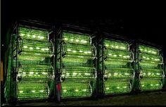 Omega Hydroponic Garden Gets Five Times As Much Food Per Watt