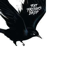 Blackbird - Fat Freddy's Drop