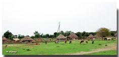 Ethiopian Village Pictures