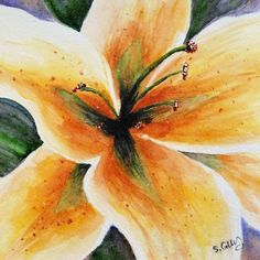 SALE Yellow Lily Flower Close Up Original Painting  £15.00