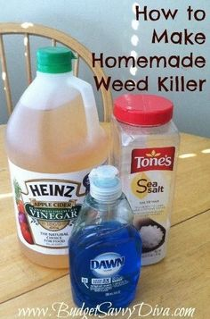 Home Made Weed Killer: Mix gallon of (Apple Cider) Vinegar, C Epson salt and 2 Tbsp Dawn liquid dish soap and pour into a spray bottle. Then just spray weeds thoroughly. Make double batch and put in your big weed sprayer! Weed Killer Homemade, How To Make Homemade, Do It Yourself Inspiration, Lawn Care, Lawn And Garden, Garden Weeds, Box Garden, Garden Water, Spray Bottle