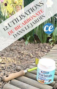 12 Utilisations du Bicarbonate Dans le Jardin Que Personne Ne Connaît.