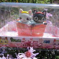 solar dancing cats