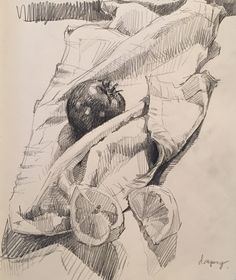 Sketchbook by Sarah Sedwick. 8.24.16.