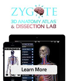 Zygote Body - This is a 3D anatomy dissection lab that lets students explore the different physiological systems.