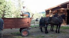 Tricia Goyer's new novel explains the Kissing Bridge Tradition #Amish