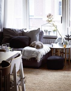 cozy living room  #cozy #livingroom #livingroomdecor