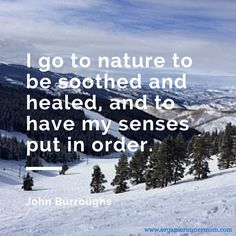 I go to nature to be soothed and healed, and to have my senses out in order. –John Burroughs www.organicrunnermom.com @organicrunmom #inspiration