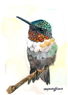 ACEO Limited Edition  Perching hummingbird by annalee377 on Etsy, $4.00