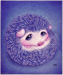 hedgehod picture