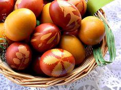 OUA VOPSITE NATURAL   Rețete Fel de Fel Easter Eggs, Yummy Food, Recipes, Macrame, House, Faith, Delicious Food, Home
