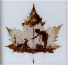 leaf silhouette...I'd love to know how this is done, but the link leads to NOWHERE