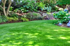 Ever thought about artificially turfing your outdoor space? Discover all the pros and cons of 'fake grass' with this handy guide from Waltons Water Features In The Garden, Garden Features, Artificial Grass Price, Fake Lawn, Insulated Garden Room, Artificial Grass Installation, Ground Cover Plants, Woodland Garden, Garden Structures