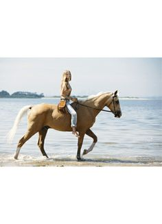 Never got the chance to ride horses on the beach but I would do just about anything todo so