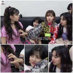Twice Memes 2 👑🍭 South Korean Girls, Korean Girl Groups, Signal Twice, Twice Members Profile, Haikyuu Funny, Twice Kpop, Funny Kpop Memes, Fandoms Unite, Wholesome Memes