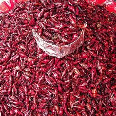 #chapulines #grasshoppers #travel #coolfood #oddfood #foreignfood #oaxaca #conchile #chile #mexicanfood by @manosrojas