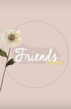 Ideas For Flowers Wallpaper Iphone Lily Instagram Logo, Free Instagram, Instagram Feed, Wallpaper Backgrounds, Iphone Wallpaper, Hight Light, Insta Icon, Girl Artist, Flower Quotes