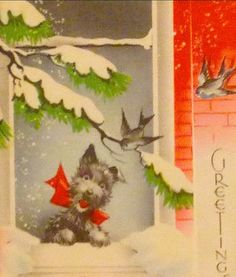 Scottie barks a Christmas greeting.