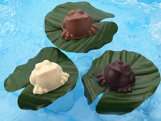Poppin' Frogs, 6 oz, 5 frogs, $32 Chocolate Shapes, Frogs, Pudding, Candy, Desserts, Amazon, Check, Tailgate Desserts, Deserts