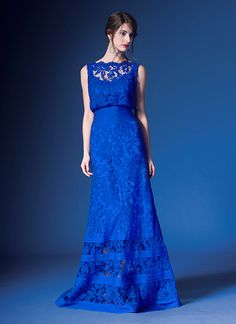 Embroidered Lace Blouson Waist Gown In Marina Tadashi Shoji Designer Tail Dress Military Ball