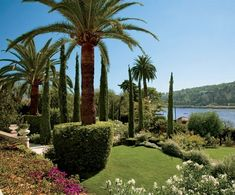 AD 2008 March: Dreaming on the Côte d'Azur - amazing garden leading down to the coast
