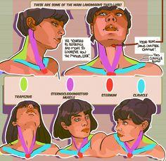 #anatomy - How to Art