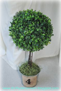 Boxwood Topiary - faux boxwood ball and sticks from yard