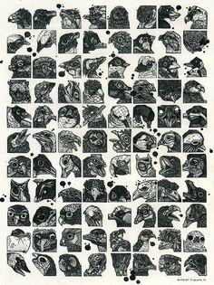 Nicholas Di Genova (Toronto, Canada) - Bird