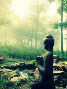 Buddha silence. // #buddha #stillness #meditation