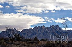 Organ Mountain Landscape Photograph by Barbara Chichester - Organ Mountain Landscape Fine Art Prints and Posters for Sale