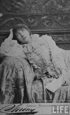 Napoleon Sarony, Sarah Bernhardt, 1880 Napoleon, New York Studio, Amazing Paintings, Alphonse Mucha, Portrait, Pencil, Europe, America, Cabinet