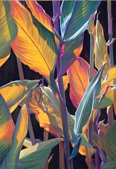 Tropical Leaf Art, Tropical Leaf Drawing Tropical Leaf Art, Tropical Leaf Drawing Tropical Art Print Tropical Decor Next İmages: Tropical Leaves, Tropical Flowers, Exotic Flowers, Purple Flowers, Leaf Drawing, Plant Drawing, Drawing Flowers, Drawing Drawing, Tropical Decor