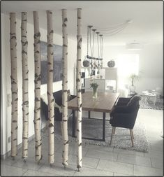White birch trunks as room divider just always fit. Candace Smith White birch trunks as room divider just always fit. Candace Smith # as # Birch trunks Source by dasdaseintk Room Divider Doors, Diy Room Divider, Divider Ideas, Temporary Room Dividers, All White Room, Room Partition Designs, Home Decor Inspiration, Home Accessories, Diy Home Decor