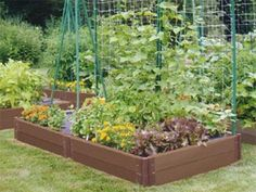 Low Budget Veggie Garden Ideas | ... Your Own Food: Small Vegetable Garden Ideas — Produce Magazine