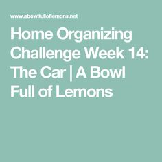 Home Organizing Challenge Week 14: The Car | A Bowl Full of Lemons