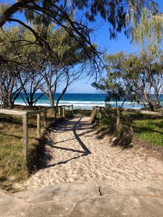 High-res images of Beaches from around the globe. Gold Coast Queensland, Gold Coast Australia, Australia Beach, Australia Travel, Queensland Australia, Australian Cattle Dog, Australian Shepherd, Camping Aesthetic, Beach Aesthetic